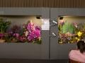 rua-das-flores-3726