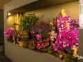 rua-das-flores-3727