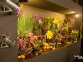 rua-das-flores-3728