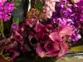 rua-das-flores-3730
