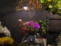rua-das-flores-3740