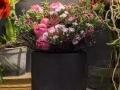 rua-das-flores-3752