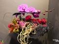rua-das-flores-3756