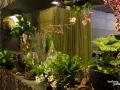 rua-das-flores-3759