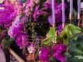 rua-das-flores-3784