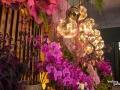 rua-das-flores-3790