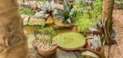 Mini Curso Garden Fair