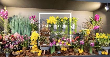 Rua das Flores – Vitrine – Márcio Leme