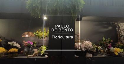 Rua das Flores – Vitrine – Paulo de Bento