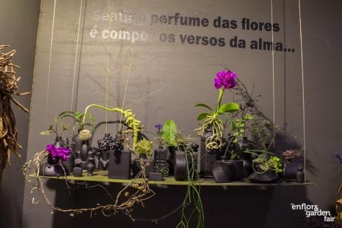 rua-das-flores-3744